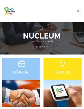 capture écran site internet responsive nucleum narbonne